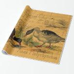 Patos silvestres y collage del cisne