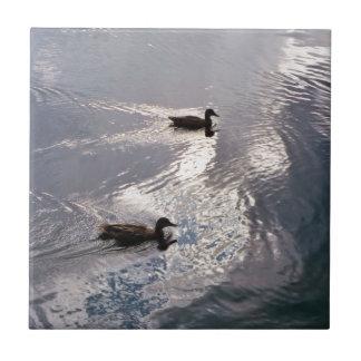 Patos tranquilos antes de la tormenta azulejo cuadrado pequeño