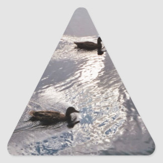 Patos tranquilos antes de la tormenta pegatina triangular