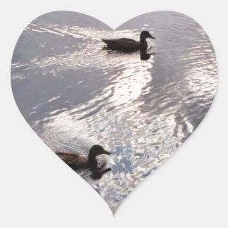 Patos tranquilos antes de la tormenta pegatina en forma de corazón