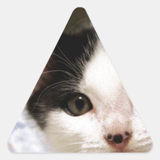 Patrick 2 triangle sticker
