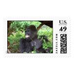Patrick #4 postage stamps