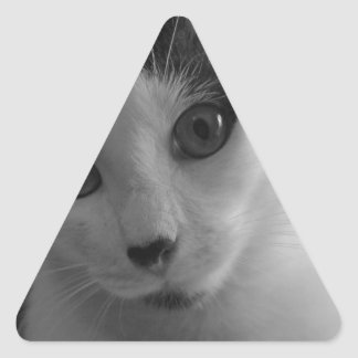 Patrick The Brave Triangle Sticker