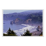 Patrick's Point State Park Poster