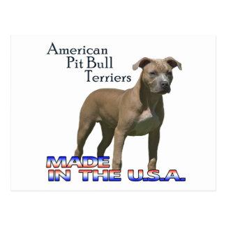 Patriot American Pit Bull Terrier (APBT) Postcard