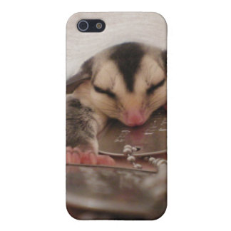 patriot sugar glider cover for iPhone SE/5/5s