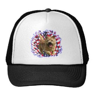 Patriota de Norwich Terrier Gorras