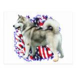 Patriota del Malamute de Alaska Postales