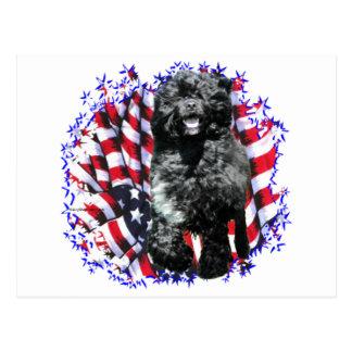 Patriota portugués del perro de agua tarjeta postal