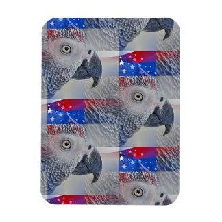 Patriotic African Grey Magnet