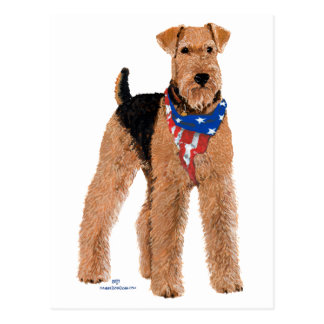 Patriotic Airedale Terrier Postcard