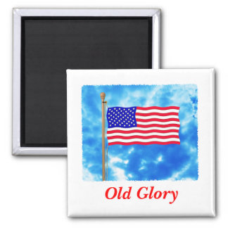 Patriotic American Flag T-Shirts and Gifts Magnet
