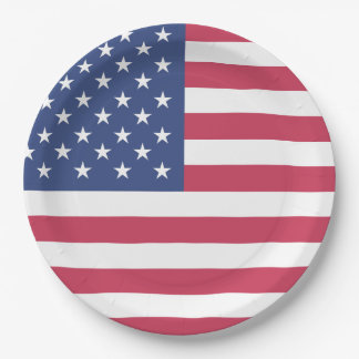 Patriotic American Flag USA Themed Party Paper Plate