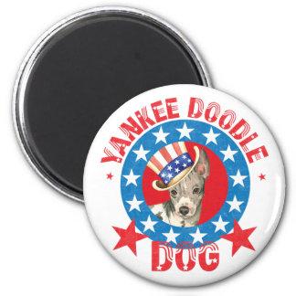Patriotic American Hairless Terrier Magnet