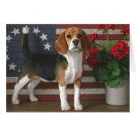 Patriotic Beagle Greeting Card