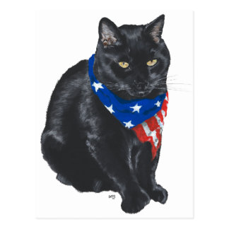 Patriotic Black Cat Postcard