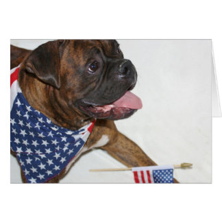 Patriotic Boxer Dog notecard