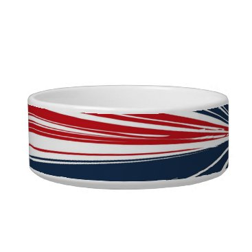 USA Themed Patriotic Burst Abstract Bowl
