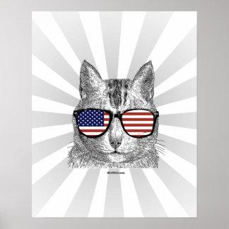 Patriotic Cat Poster