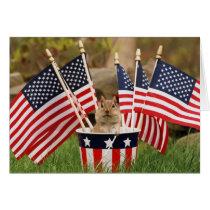 Patriotic Chipmunk