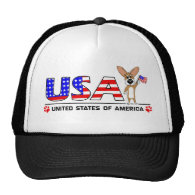 Patriotic Corgi Hat