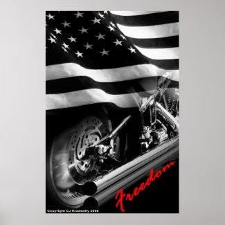 Patriotic Designs -