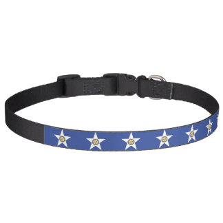 Patriotic dog collar with Flag of Houston