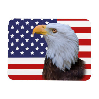 Patriotic Eagle and US Flag Flexible Magnet