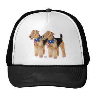 Patriotic Flag Duo Trucker Hat
