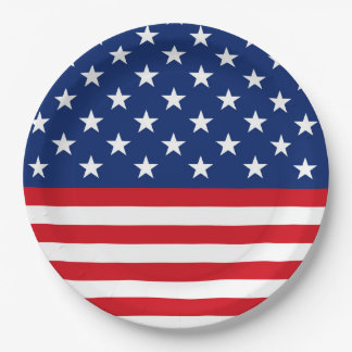 Patriotic flag pattern party paper plate July Four
