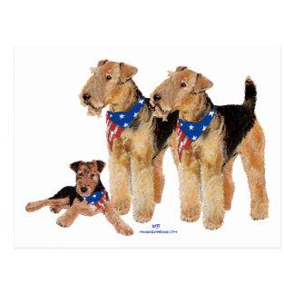 Patriotic Flag Trio Postcard