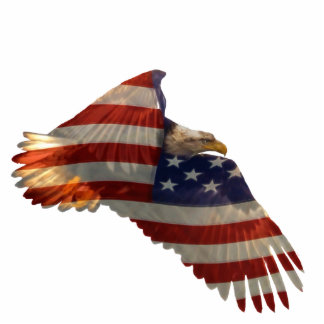 Patriotic Flying Bald Eagle & Flag Sculpted Gift Cutout
