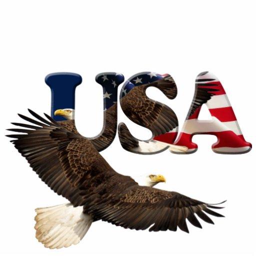 Patriotic Flying Bald Eagle & Flag Sculpted Magnet Photo Cut Out