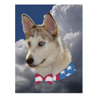 Patriotic Husky Dog Fluffy White Clouds Postcard