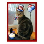 Patriotic Indigo Postcard