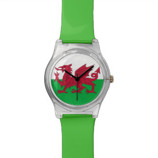 Patriotic kids watch with Flag of Wales