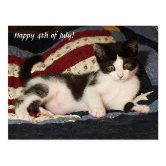 Patriotic Kitten on Quilt Post Card Cat