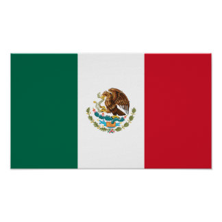 Patriotic Mexican Flag Poster
