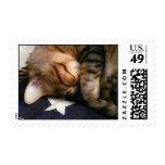 Patriotic Nap Postage Stamp