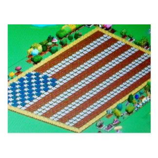 Patriotic Online Farm Crop US Flag Postcard