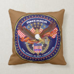 Patriotic or Veteran View Artist Comments Pillows
