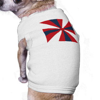 Patriotic Pinwheel T-Shirt