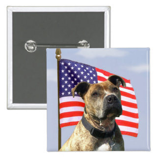 Patriotic pitbull button