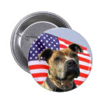 Patriotic pitbull button