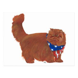 Patriotic Red Longhair Persian Cat Postcard