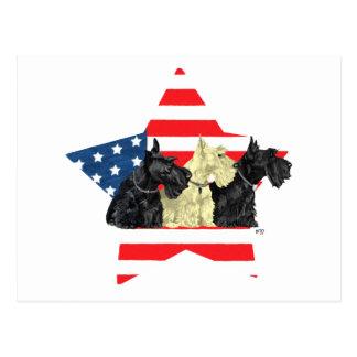 Patriotic Scottish Terriers on Star Postcard