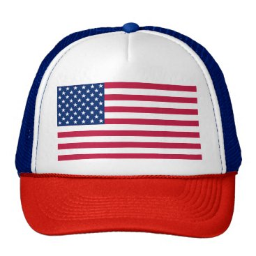USA Themed Patriotic USA American Flag Red Blue White Hat Cap