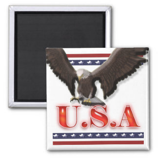 Patriotic USA eagle stars stripes Refrigerator Magnets