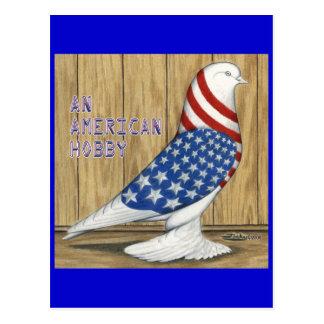 Patriotic West Pigeon Postcard