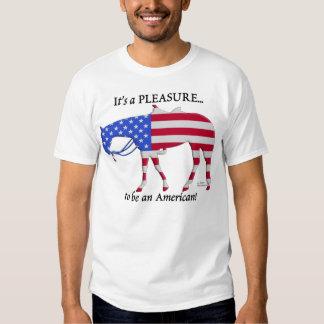 Patriotic Western Pleasure Horse T-Shirt